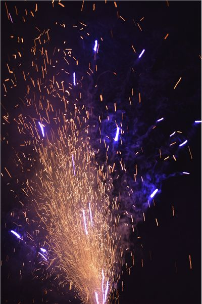Picture Of Firework Purple Sparks